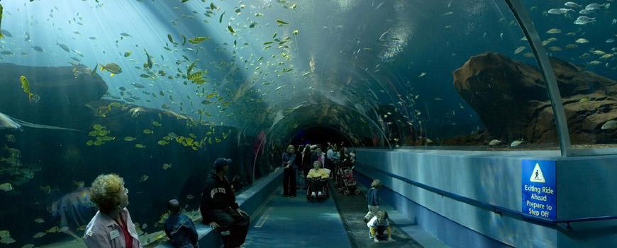 Public Aquariums Of North America